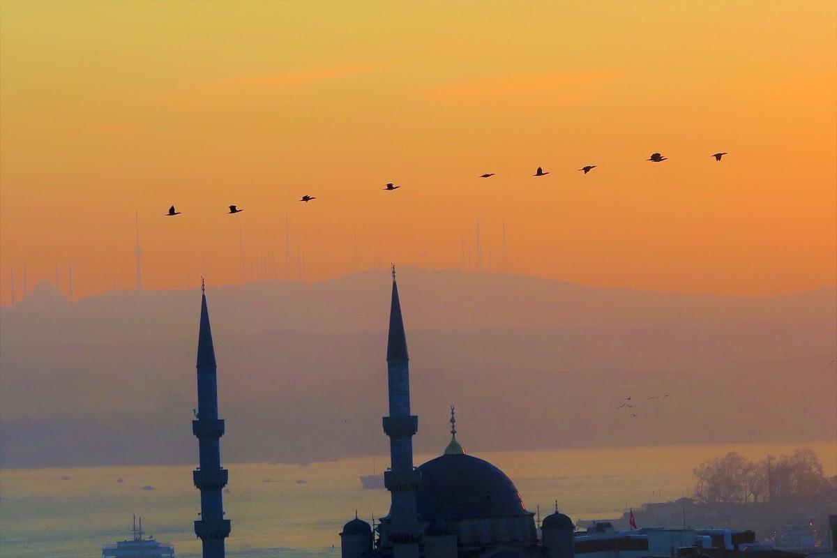 DİTİB'ten 'teravih namazı' kararı: 8 rekat kılınacak