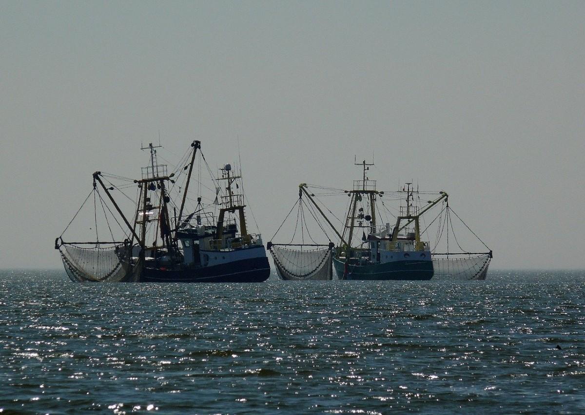 Balıkçılar İngiltere ve Fransa'yı karşı karşıya getirdi