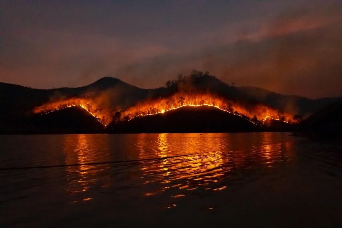 Akdeniz Bölgesi'nde Görülmemiş Yangın Türkiye'yi Sarstı
